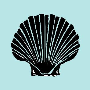 scallop design